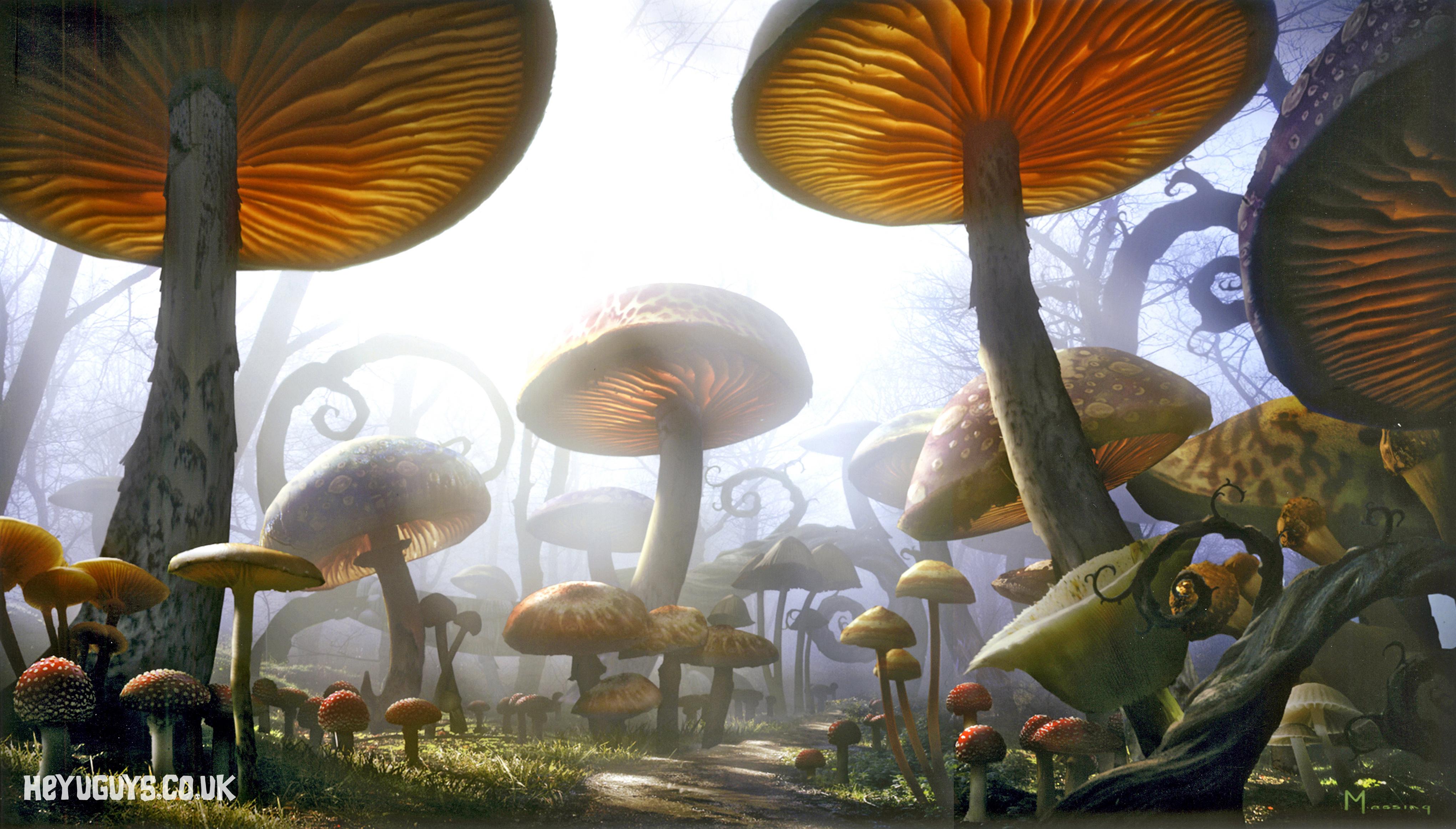Alice In Wonderland Heyuguys