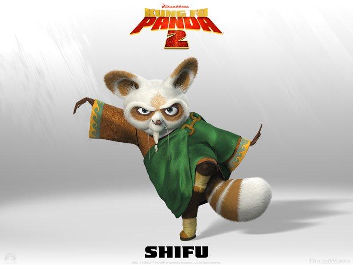 Kung Fu Panda 2 - Shifu - HeyUGuys