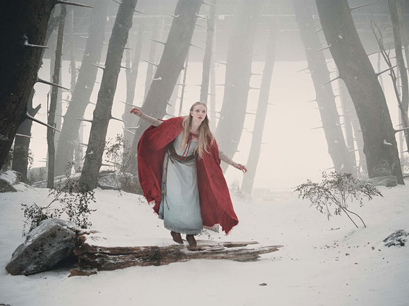 Go Looking For Grandmothers House In Red Riding Hood Set