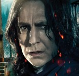 Harry Potter - Alan Rickman Character Poster