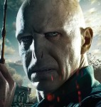 Harry Potter and the Deathly Hallows Character Banner Voldemort