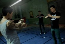 SleepingDogs_Screen_Salute