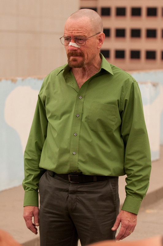 BREAKING BAD - SEASON 4 Bryan Cranston 5