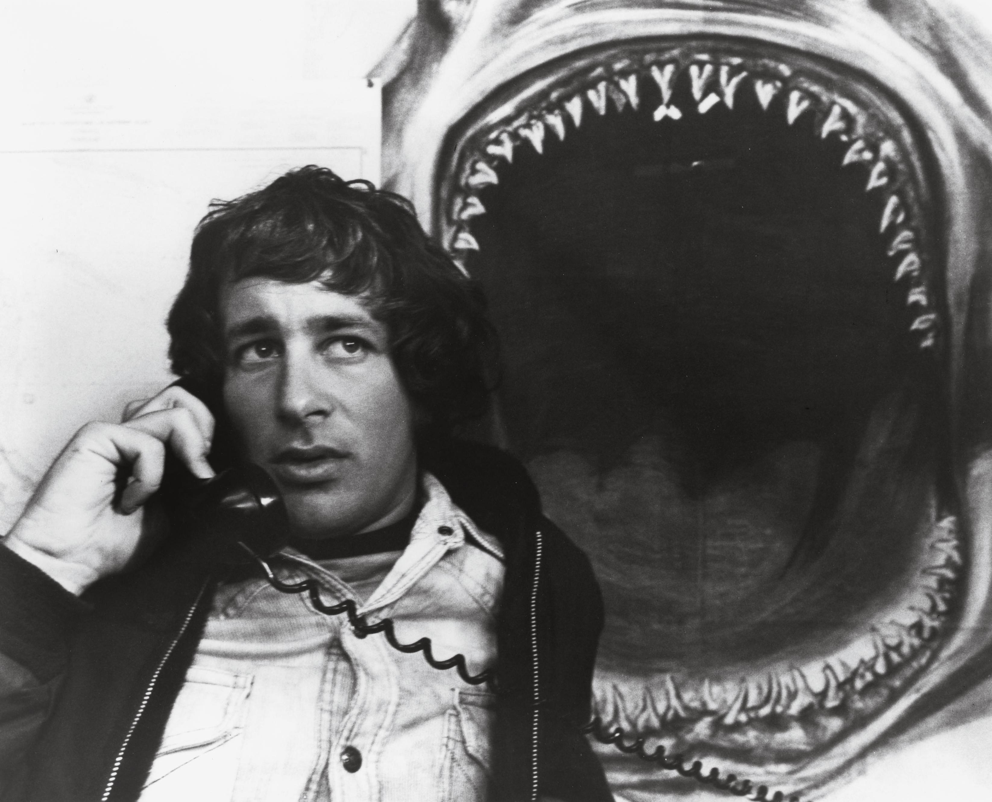 Jaws film  Wikipedia