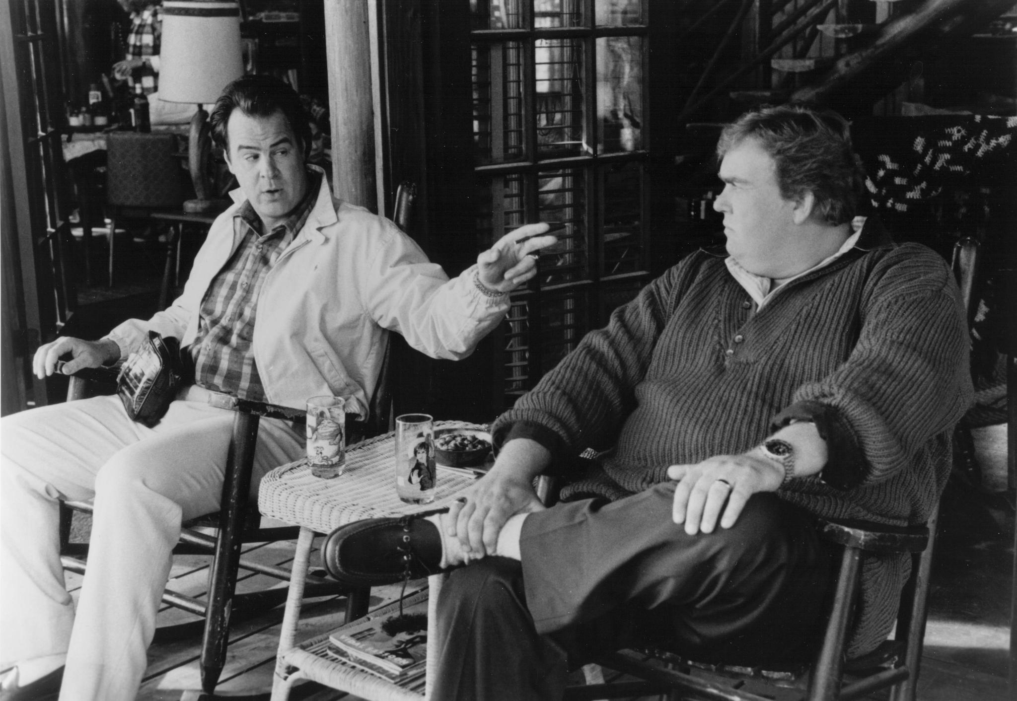 still-of-dan-aykroyd-and-john-candy-in-the-great-outdoors ...