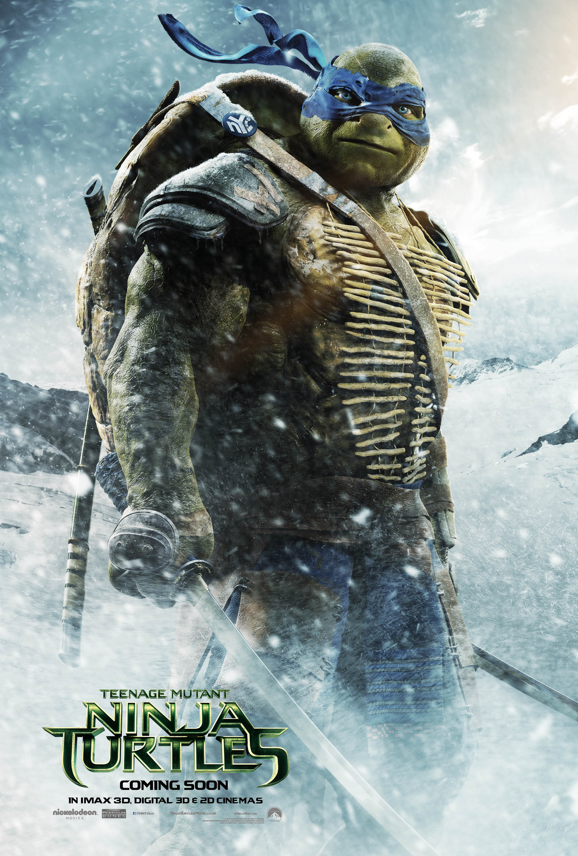 Teenage Mutant Ninja Turtles Character Poster - HeyUGuys