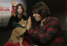 james-bowen-bob-the-cat-film-interviews