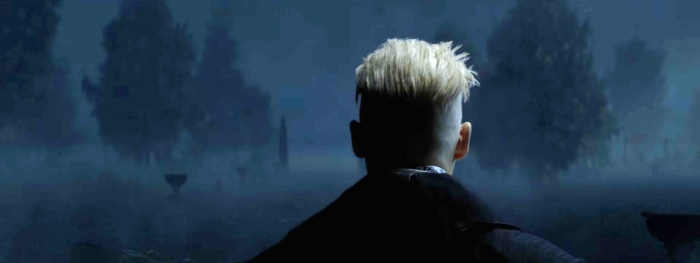 Fantastic Beasts and Where to Find Them Sequel
