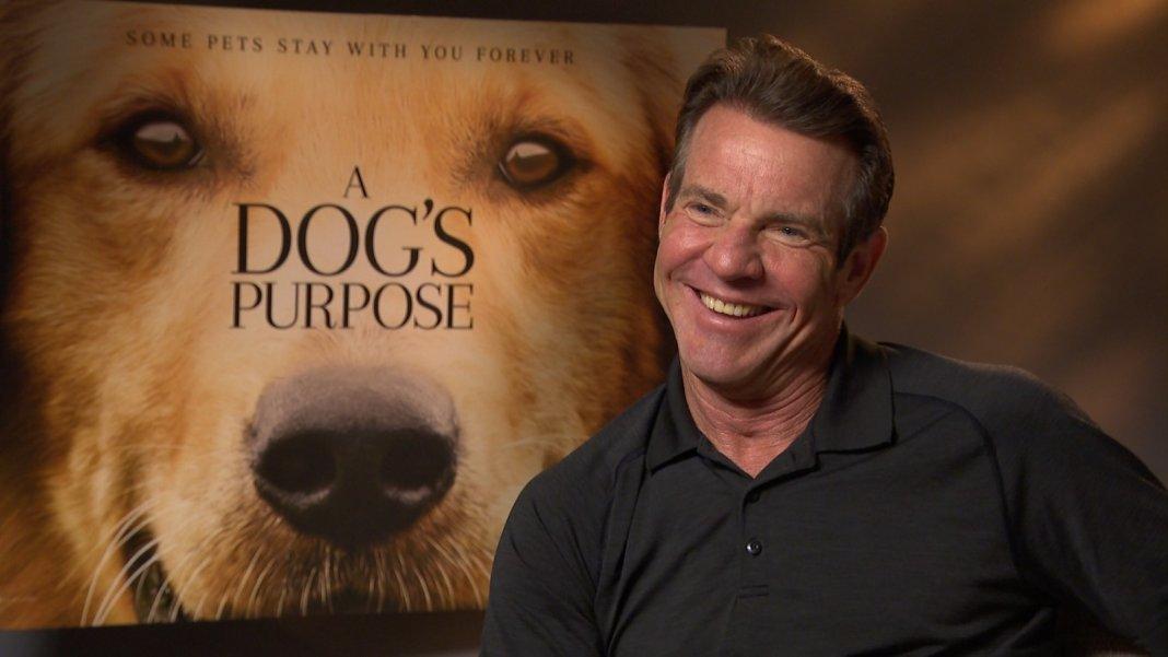 A Dogs Purpose Movie Watch Online Putlocker