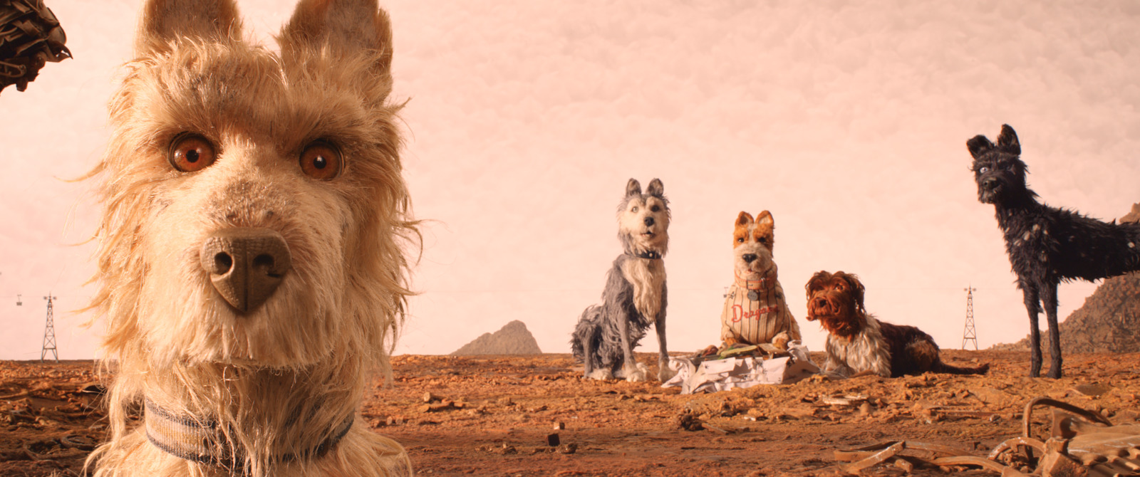 Cats And Dogs Movie Review