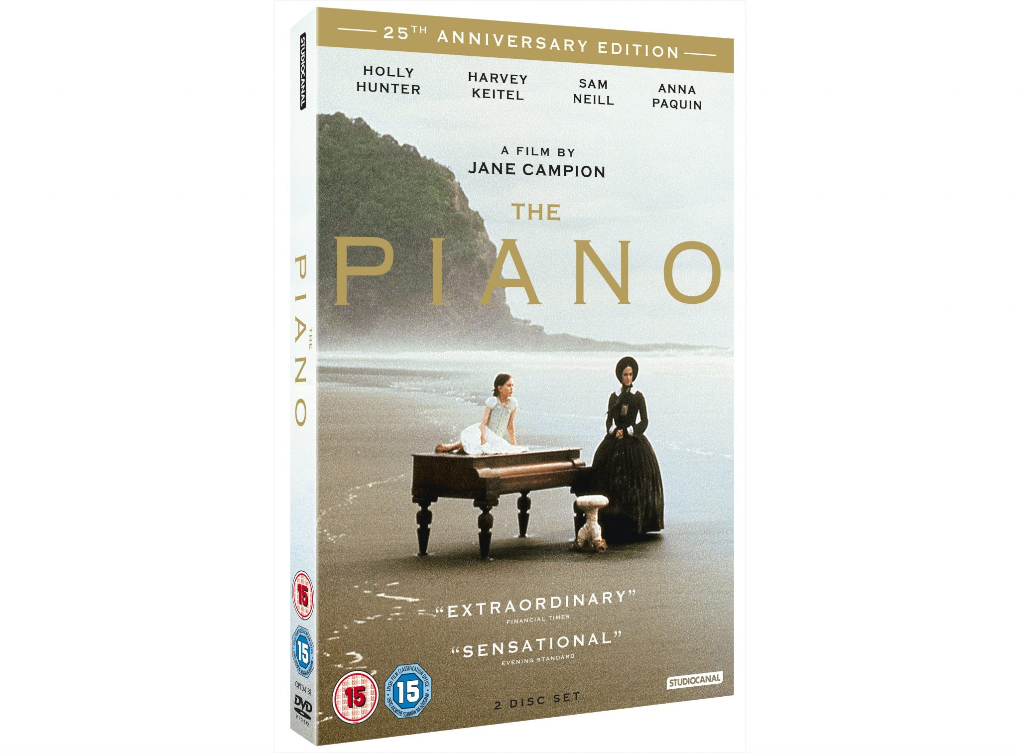 Jane champion the piano essay