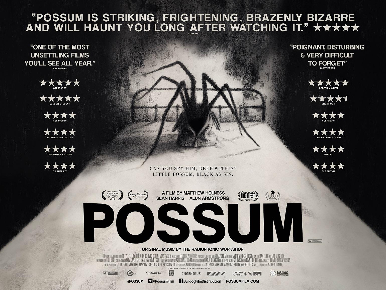 Risultati immagini per possum film poster