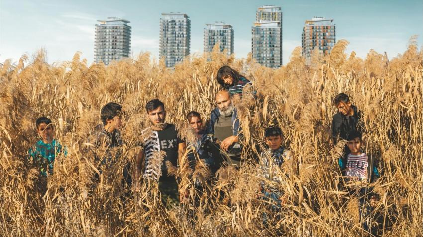 Acasa, My Home Review - HeyUGuys